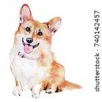 pembroke welsh corgi dog... | Shutterstock . vector #740142457