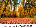 the path in the forest in the... | Shutterstock . vector #740152057