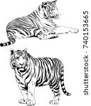 set of vector drawings on the... | Shutterstock .eps vector #740153665