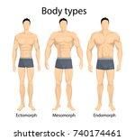 male body types. ectomorph ... | Shutterstock .eps vector #740174461