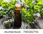a dark bottle of oregano... | Shutterstock . vector #740182741