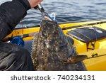 fisherman landing a large... | Shutterstock . vector #740234131