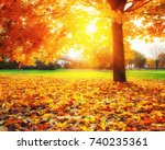 sunny autumn landscape with...   Shutterstock . vector #740235361