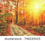 pathway in the autumn forest | Shutterstock . vector #740235415
