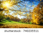 sunny autumn landscape with... | Shutterstock . vector #740235511