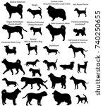 Stock vector collection of silhouettes of different breeds of dogs 740250655