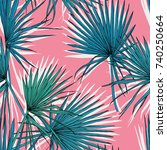 seamless pattern with image of... | Shutterstock .eps vector #740250664
