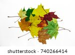 Maple Leaves Isolated On White...