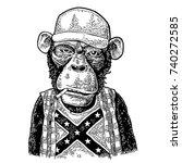 monkey redneck smokes cigarette ... | Shutterstock .eps vector #740272585