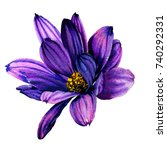 watercolor hand drawn beautiful ... | Shutterstock . vector #740292331