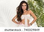 sensual beautiful brunette...   Shutterstock . vector #740329849