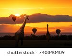 silhouette of two masai giraffe ... | Shutterstock . vector #740340409