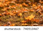 photo of autumn leaves in the... | Shutterstock . vector #740513467