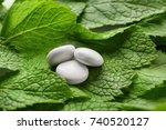delicious hard candies on mint... | Shutterstock . vector #740520127