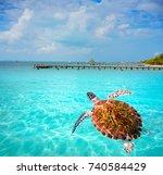 isla mujeres island caribbean...   Shutterstock . vector #740584429