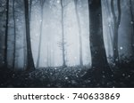 fantasy forest  mysterious... | Shutterstock . vector #740633869