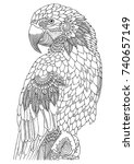 macaw. hand drawn parrot.... | Shutterstock .eps vector #740657149