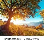highland vegetation modest... | Shutterstock . vector #740694949