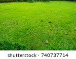 garden   Shutterstock . vector #740737714