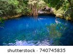 cenote sinkhole in rainforest... | Shutterstock . vector #740745835