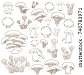 collection of sketch mushrooms... | Shutterstock .eps vector #740783971