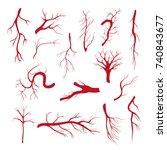 set of blood vessels   modern...   Shutterstock .eps vector #740843677