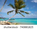 mahahual caribbean beach palm... | Shutterstock . vector #740881825