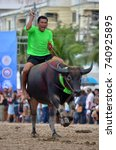 Small photo of CHONBURI, THAILAND - OCTOBER 18, 2013: Man Riding BUFFALO RACING Traditional in Chonburi he Use Little Long Wood to Hit Buffalo to Speed up to Faster