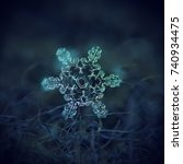Real Snowflake Macro Photo ...
