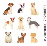 dogs collection. vector... | Shutterstock .eps vector #740988544