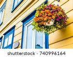 Hanging Flower Pot Closeup Of...