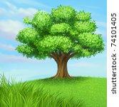 jpeg summer tree at green... | Shutterstock . vector #74101405