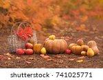 still life of harvest fruit and ... | Shutterstock . vector #741025771