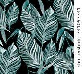 watercolor seamless pattern... | Shutterstock . vector #741097741