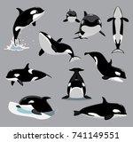 orca killer whale poses cartoon ...   Shutterstock .eps vector #741149551