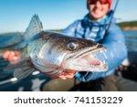 happy angler holds angry zander ... | Shutterstock . vector #741153229