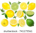 fresh lemon and  lime  isolated ...