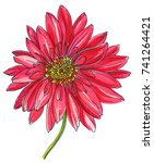 red gerbera flower blossom.... | Shutterstock . vector #741264421
