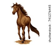 horse or racehorse animal
