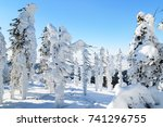 winter landscape with snow on... | Shutterstock . vector #741296755