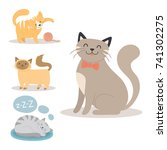 portrait cat animal sleep pet... | Shutterstock .eps vector #741302275