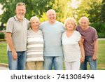 group of elderly people resting ... | Shutterstock . vector #741308494