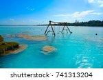 estromatolitos stromatolites in ...   Shutterstock . vector #741313204