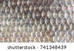 food background  texture of... | Shutterstock . vector #741348439
