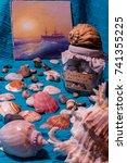 sea still life with shells ... | Shutterstock . vector #741355225