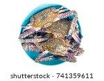 raw chesapeake blue crab  blue... | Shutterstock . vector #741359611