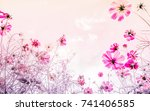 cosmos flowers  in pastel color ... | Shutterstock . vector #741406585