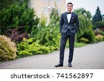 portrait of a handsome young... | Shutterstock . vector #741562897