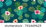 dark green aloha tropical print.... | Shutterstock .eps vector #741669625