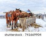Sorrel Horses Eating Hay From ...